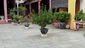 Faccia il giardinaggio al tempio nella città di Hoi An Ancient, Vietnam stock footage
