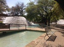 Faccia il giardinaggio con gli alberi e le fontane a San Antonio, il Texas Fotografia Stock