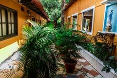 Faccia il giardinaggio con le piante e un altare da una casa coloniale Immagine Stock
