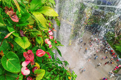 Faccia il giardinaggio dalla baia dalle altezze, Singapore Fotografia Stock Libera da Diritti