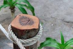 Faccia la coda la linea alla spiaggia tropicale per usare la toilette con la corda bianca Immagini Stock