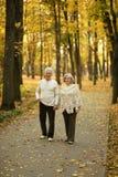 Faccia maturare camminare delle coppie Fotografie Stock