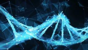 Faccia segno al ciclo della molecola 4k del DNA del plesso del poligono di Digital del fondo video d archivio