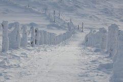 Faccia un'escursione le tracce di montagna coperte di neve Immagine Stock