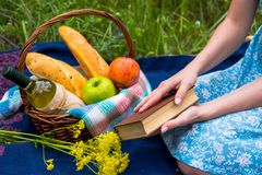 Faccia un picnic in natura all'estate, canestro con alimento Giovane donna con la a Fotografia Stock Libera da Diritti