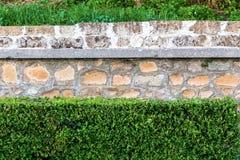 Facciata classica di vecchia struttura della parete di pietra con i cespugli verdi Immagini Stock Libere da Diritti