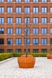 Facciata della costruzione di mattone moderna con un albero nella parte anteriore Immagine Stock Libera da Diritti