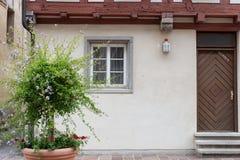 facciata di pietra antica con il fogliame dei vasi e dei fiori Fotografia Stock Libera da Diritti
