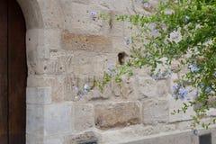 facciata di pietra antica con il fogliame dei vasi e dei fiori Immagine Stock