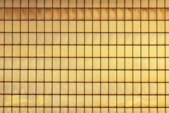 Facciata di vetro Fotografia Stock