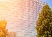 Facciata di vetro della costruzione di affari Immagine Stock