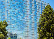 Facciata di vetro della costruzione di affari Immagini Stock