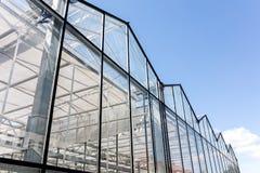 Facciata di vetro della serra agricola sul fondo del cielo blu Immagine Stock