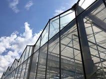 Facciata di vetro della serra contro il cielo nuvoloso blu Fotografia Stock