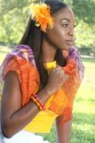 Face étnica da mulher: Beleza africana, diversidade Fotos de Stock