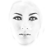 Face Royalty Free Stock Images
