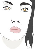 Face. A illustration of a woman's face stock illustration