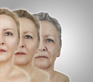 Face age Royalty Free Stock Photography
