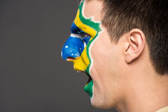 Face art. Flags. Stock Images