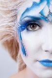Face art makeup  Royalty Free Stock Photography