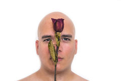 Face of a bald man in white background. With an old red rose on his face Royalty Free Stock Photo