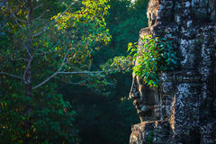 Face of Bayon temple, Angkor, Cambodia royalty free stock photos