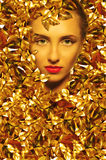 Face of a beautiful girl with golden leaves Royalty Free Stock Image