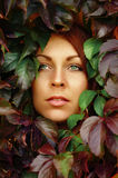 Face of beautiful redheaded woman in leaves Royalty Free Stock Image
