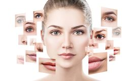 Face of beautiful woman pictured of different parts. stock images