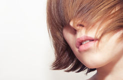 Face of beautiful young woman. Covered with hair Stock Image