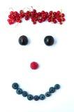 Face of blueberries blackberries and raspberries Stock Images