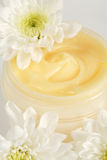 Face or body cream Royalty Free Stock Image
