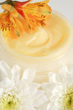 Face or body cream Royalty Free Stock Images