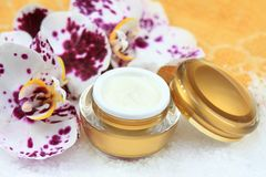 Face and body cream  with orchid Stock Photo