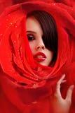 Face bonita nas pétalas de rosas vermelhas Imagem de Stock Royalty Free