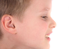 Face of boy. Face of young boy on the white background stock image