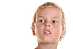 Face boy child isolated. Wise face boy child isolated royalty free stock image