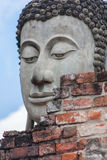 The face of Buddha Royalty Free Stock Image