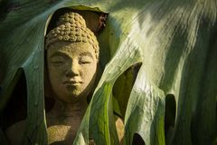 The face buddha statue close-up.Thailand. Stock Photo