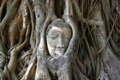 Face of buddha stute Stock Photo