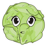 Face of cabbage Stock Photo