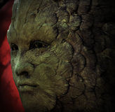 Face carved in tree Royalty Free Stock Images
