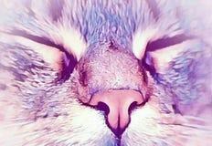 Морда кота крупным планом в красочной обработке Royalty Free Stock Photography