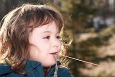 Portrait of child in nature Royalty Free Stock Photo