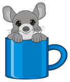 Face of chinchilla on cup Royalty Free Stock Images