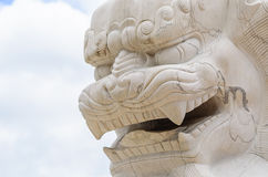 Face of Chinese Lion Statue Royalty Free Stock Images