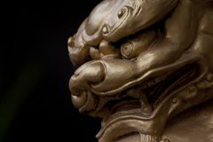 Face of Chinese Lion Statue. Gold Color on black background stock photos