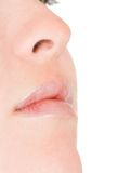 Face close up - nose and mouth Stock Photography