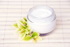 Face Cream. Cosmetic Face Cream Bottle and Yellow Leaves Stock Photography