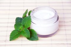 Face Cream. Cosmetic Face Cream Bottle and Green Leaves Royalty Free Stock Photography